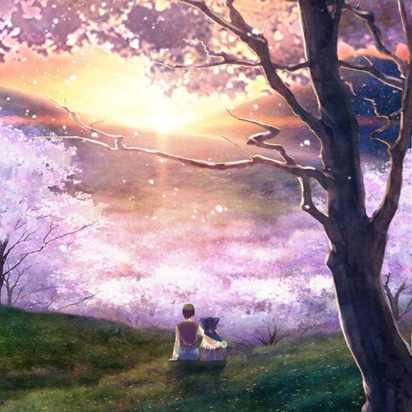 盛开的钢琴之森下图片