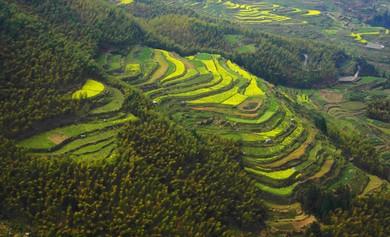 南尖岩景区隶属于遂昌县王村口镇,位于遂昌县西南部,东南与风景区