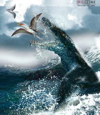 史上最大水生动物