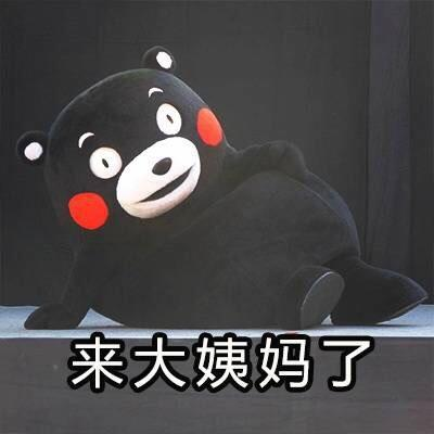 【斗图行走】必备的动态熊本熊图片萌表情贱表情包图片